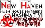 HashMat VI